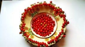 Cuenco fresco del jardín de tomates imagen de archivo libre de regalías