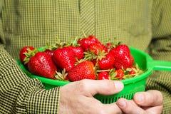 Cuenco lleno de fresas jugosas rojas en un man& x27; mano de s fotografía de archivo
