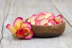 Cuenco por completo de pétalos color de rosa Foto de archivo libre de regalías