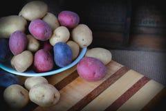Cuenco por completo de patatas coloridas Imágenes de archivo libres de regalías