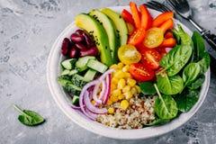 Cuenco sano de Buda del almuerzo del vegano Aguacate, quinoa, tomate, pepino, habas rojas, espinaca, cebolla roja y ensalada roja fotos de archivo