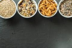 Cuencos con los carbohidratos enteros del grano, la avena, el arroz moreno, las semillas, la quinoa y las pastas enteras del gran fotos de archivo libres de regalías
