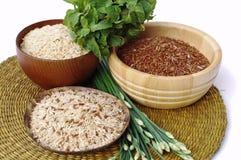 3 cuencos de arroz marrón, rojo, y mezclado crudo Imagen de archivo