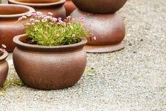 Cuencos de cerámica pasados de moda de los floreros de la arcilla Imagen de archivo libre de regalías