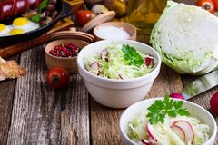 Cuencos de ensalada de las verduras frescas con la col y el rábano Fotos de archivo libres de regalías