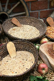 Cuencos de granos de cereal Fotografía de archivo libre de regalías