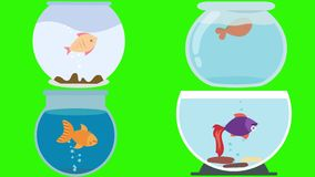 Cuencos de los pescados de la historieta con los pescados muertos en una pantalla verde ilustración del vector