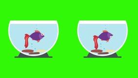 Cuencos de los pescados de la historieta con los pescados y Live Fish muertos ilustración del vector