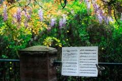 Cuenta de la música del resorte Fotografía de archivo