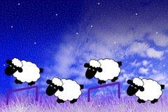 Cuenta de ovejas Foto de archivo