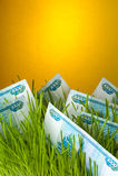Cuentas de la rublo en hierba verde Fotografía de archivo