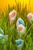 Cuentas de la rublo en hierba verde Imágenes de archivo libres de regalías
