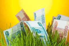Cuentas de la rublo rusa entre hierba verde Imágenes de archivo libres de regalías