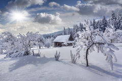 Cuento de hadas del invierno, nevadas pesadas fotografía de archivo libre de regalías