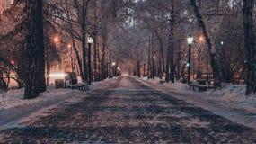 Cuento de hadas del invierno siberiano foto de archivo