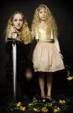 Cuento de hadas - princesa y el guerrero Foto de archivo
