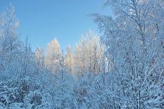Cuento de la nieve imagen de archivo libre de regalías
