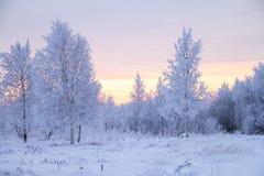 Cuento del invierno Fotos de archivo libres de regalías