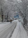 Cuento del invierno fotografía de archivo libre de regalías
