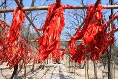 Cuerda afortunada de la muestra del zodiaco en Año Nuevo chino Imagenes de archivo