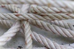 Cuerda blanca en el muelle Fotografía de archivo