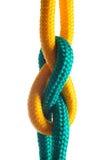 Cuerda con el nudo marina en el fondo blanco foto de archivo