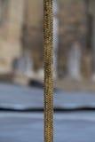 Cuerda de oro en la etapa del teatro Fotos de archivo