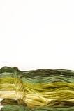 Cuerda de rosca del bordado Foto de archivo libre de regalías