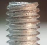 Cuerda de rosca del tornillo Imágenes de archivo libres de regalías