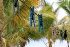 Cuerda para tender la ropa sola en las zonas tropicales Fotografía de archivo libre de regalías