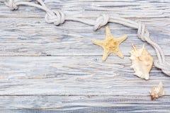 Cuerda y estrellas de mar marinas en los tableros blancos Imágenes de archivo libres de regalías