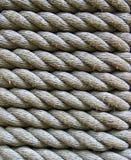 Cuerdas Imagenes de archivo