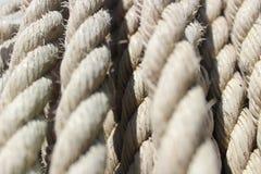 Cuerdas torcidas ejecución múltiple Fotografía de archivo libre de regalías