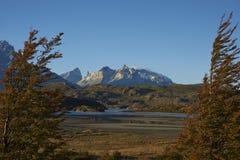 Cuernos del Paine Torres del Paine στο National πάρκο, Χιλή Στοκ φωτογραφία με δικαίωμα ελεύθερης χρήσης
