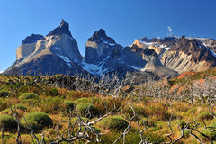 Cuernos del Paine Royalty Free Stock Photos