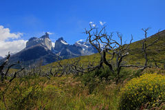 Cuernos Paine Grande, Torres Del Paine National Park, Patagonia, Chile. Southamerica royalty free stock photography