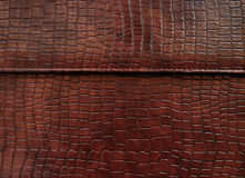 Cuero con textura vestida cocodrilo. Imagen de archivo libre de regalías