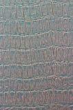 Cuero con textura vestida cocodrilo. Imagen de archivo