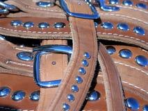 Cuero del harness imagen de archivo