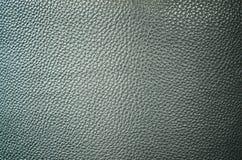 Cuero gris del cocodrilo Imagenes de archivo