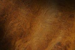 Cuero marrón apenado encendido diagonalmente foto de archivo