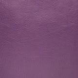 Cuero púrpura Imagen de archivo libre de regalías