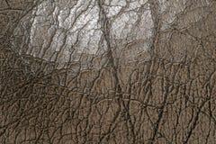 Cuero sucio de la textura interior del coche Imagen de archivo