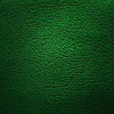 Cuero verde Fotos de archivo