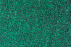 Cuero verde Fotografía de archivo