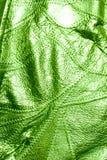 Cuero verde del fondo de la textura Fotos de archivo libres de regalías
