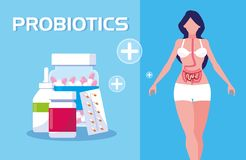 Cuerpo de la mujer con probiotics de las medicinas stock de ilustración