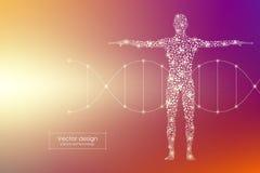 Cuerpo humano del vector con la DNA de las moléculas Medicina, ciencia y concepto de la tecnología ilustración del vector