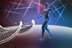 Cuerpo humano femenino de la mujer con la DNA Imagen de archivo