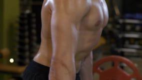 Cuerpo muscular de un hombre en gimnasio almacen de metraje de vídeo